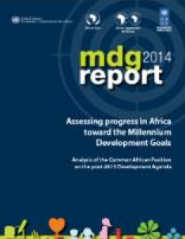 mdg-report-2014_cov